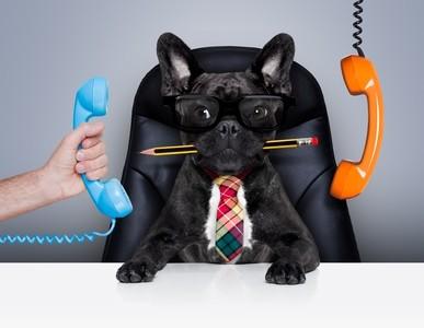 Stress und Stressmanagement