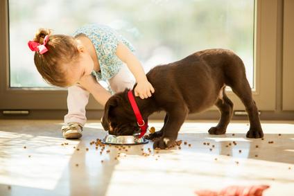 Baby, Kind und Hund